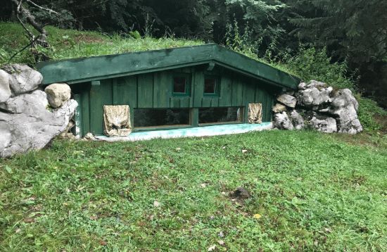 Brown Bear Hide #3