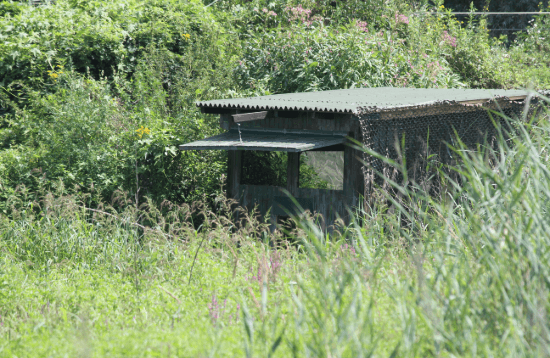 Waterbird Hide